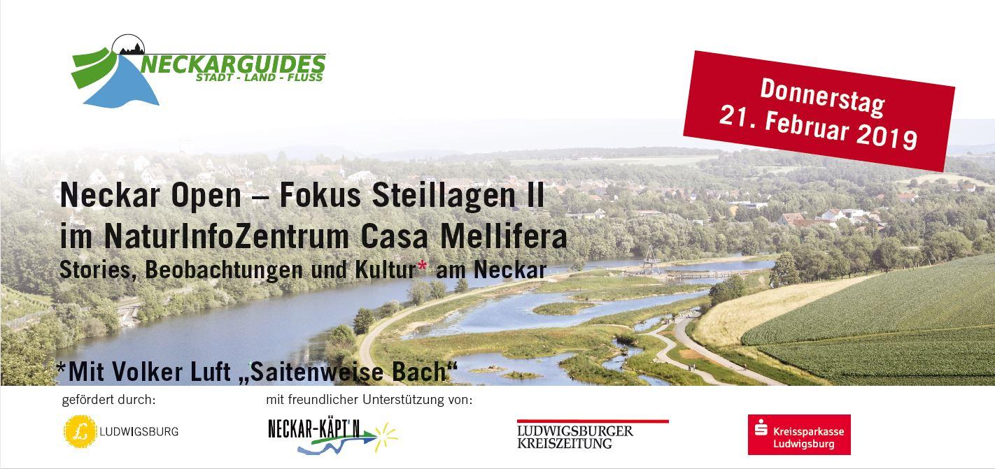 Neckar Open 14